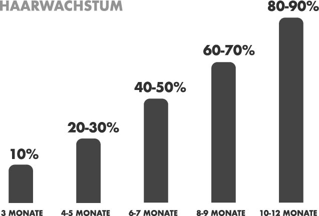 haarwachstum-infografik